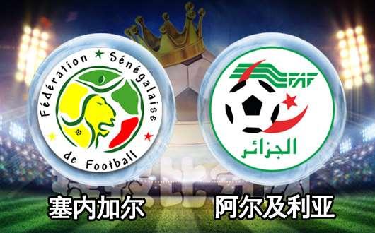 塞内加尔vs阿尔及利亚 决赛双方打出对攻表演战
